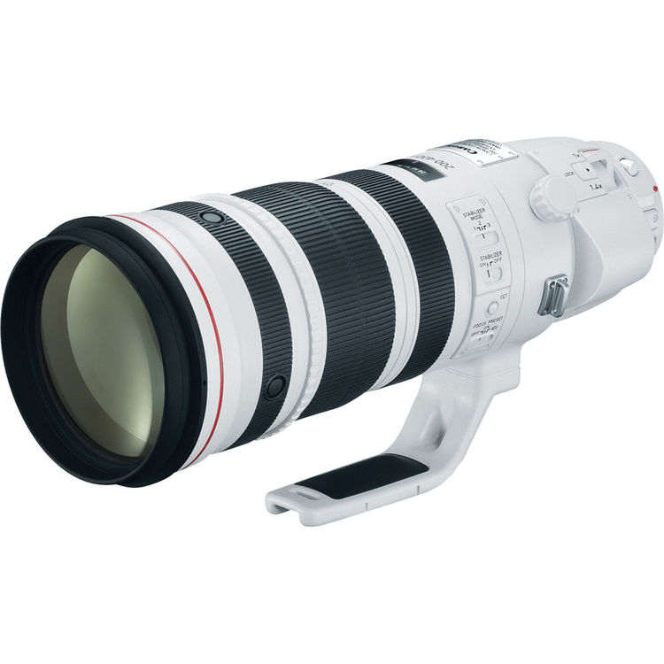 CANON EF 200-400 f/4.0 L IS USM + EXT 1.4X